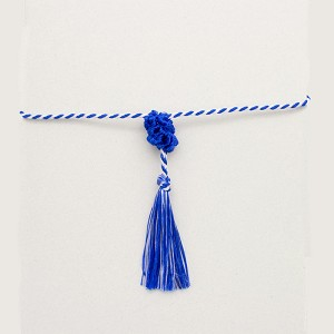 Hanukkah Program Tassel Bundle